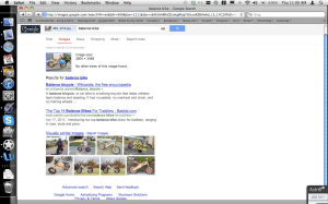 "Screen shot of my ""search by image"" in Google"